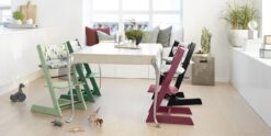 The Tripp Trapp High Chair is Available in Many Colors Including Black, Green, Red, and More