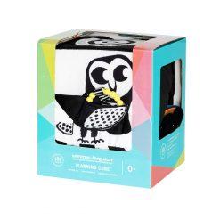 Wimmer Ferguson Learning Cube Box