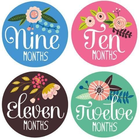 Lucy Darling Milestone Stickers for Baby