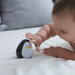 Wooden Sensory Penguin for Babies