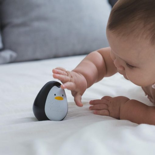 Wooden Sensory Penguin for Babies