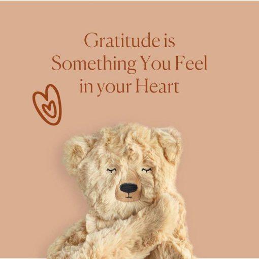 Gratitude Teaching Honey Bear by Slumberkins