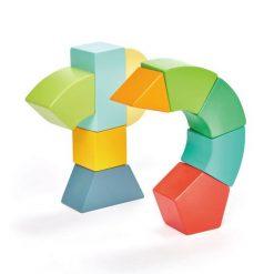 Tender Leaf Toys Primary Magblocs