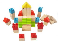 PlanToys Creative Blocks 2