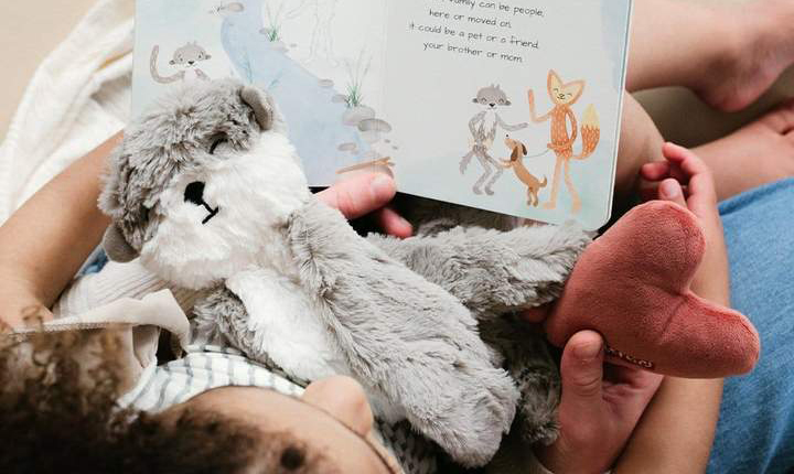 Safe Snuggler Lovey Toy for Babies and Toddlers