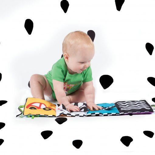 Brain development toy for kids