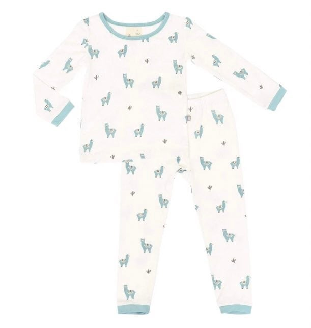 Pjs for Toddlers Made from Soft Bamboo Rayon Material Kyte Baby Toddler Pajama Set