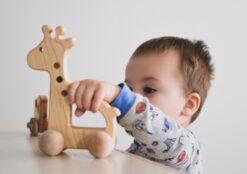 Bannor Toys Giraffe Wooden Push Toy