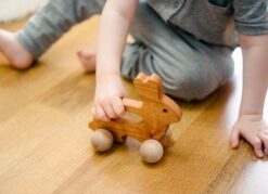 Bannor Toys Bunny Wooden Push Toy